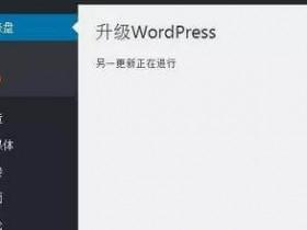 升级WordPress时出现