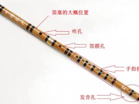 声音在管中传播的特点
