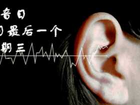国际噪声关注日